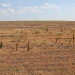 марсианские пейзажи по пути в Дивногорье
