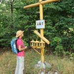 Поминальный крест на погосте села Курово, затопленного водохранилищем